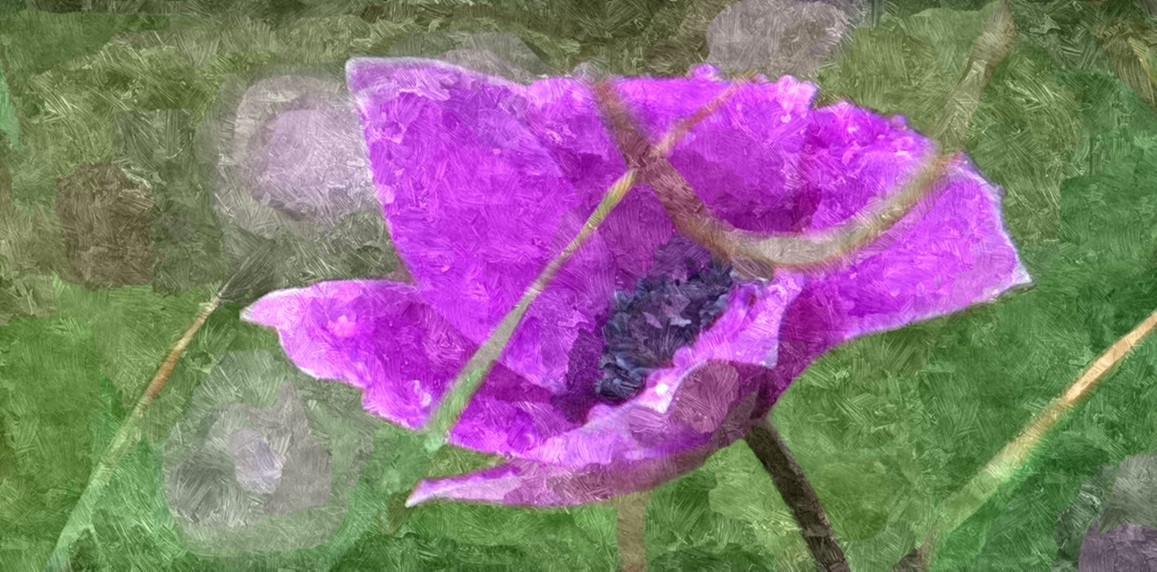 Ciaran Moore Flower Painting